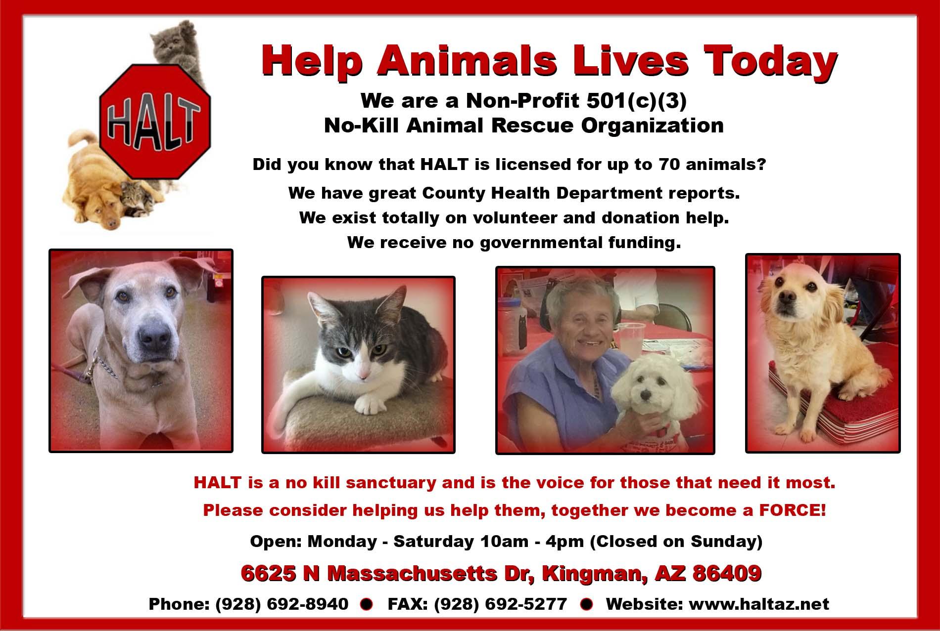 Nonprofit, Animal Rescue and Adoption, Kingman Arizona